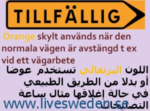 skylt9